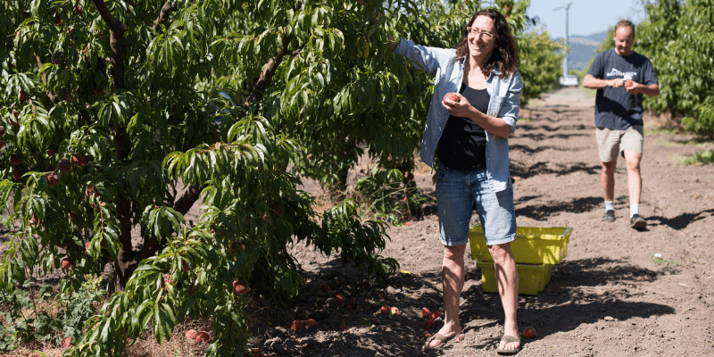 Jill and Steve in the peach orchard